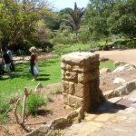 concrete-outdoor-drinking-fountains-kirstenbosch-gardens-3