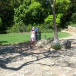 concrete-outdoor-drinking-fountains-kirstenbosch-gardens-7